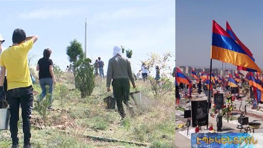 Բարդի, սոսի, ծիրանենի. «Եռաբլուր»-ում նոր ծառեր են տնկվել